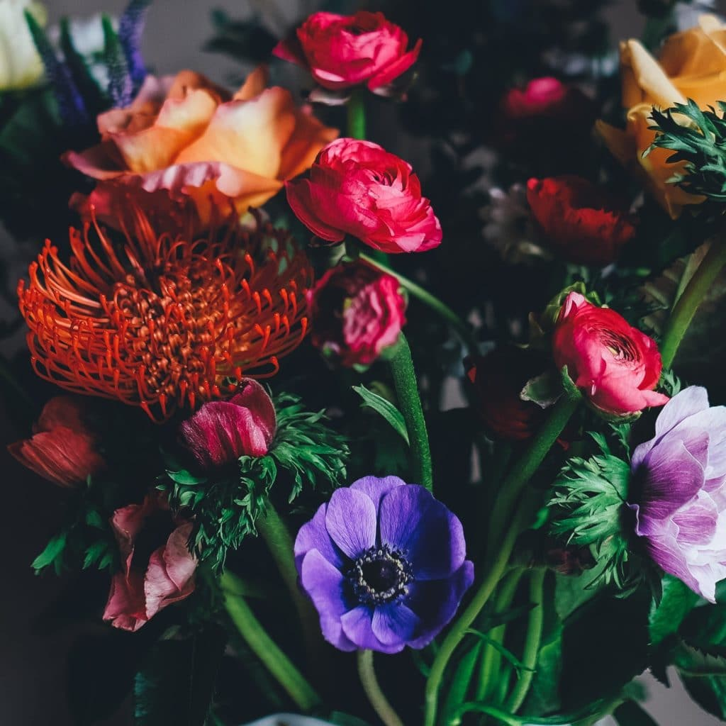 tapping is awesome #243 stunning photo of roses and other flowers in reds and purple