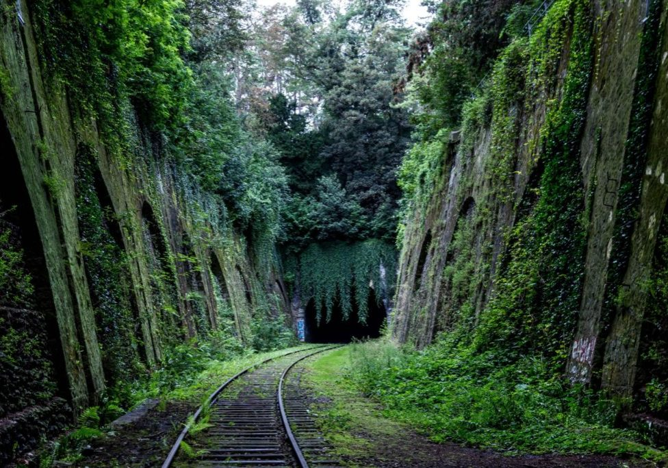 moss covered rock walls along train tracks into tunnel #64