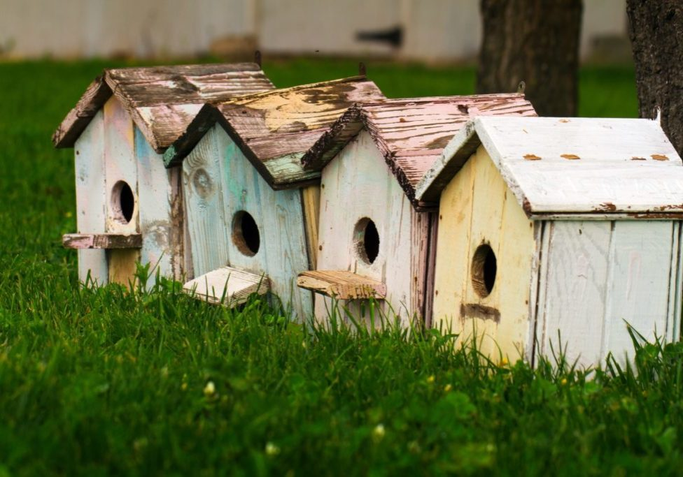 four bird houses lined up