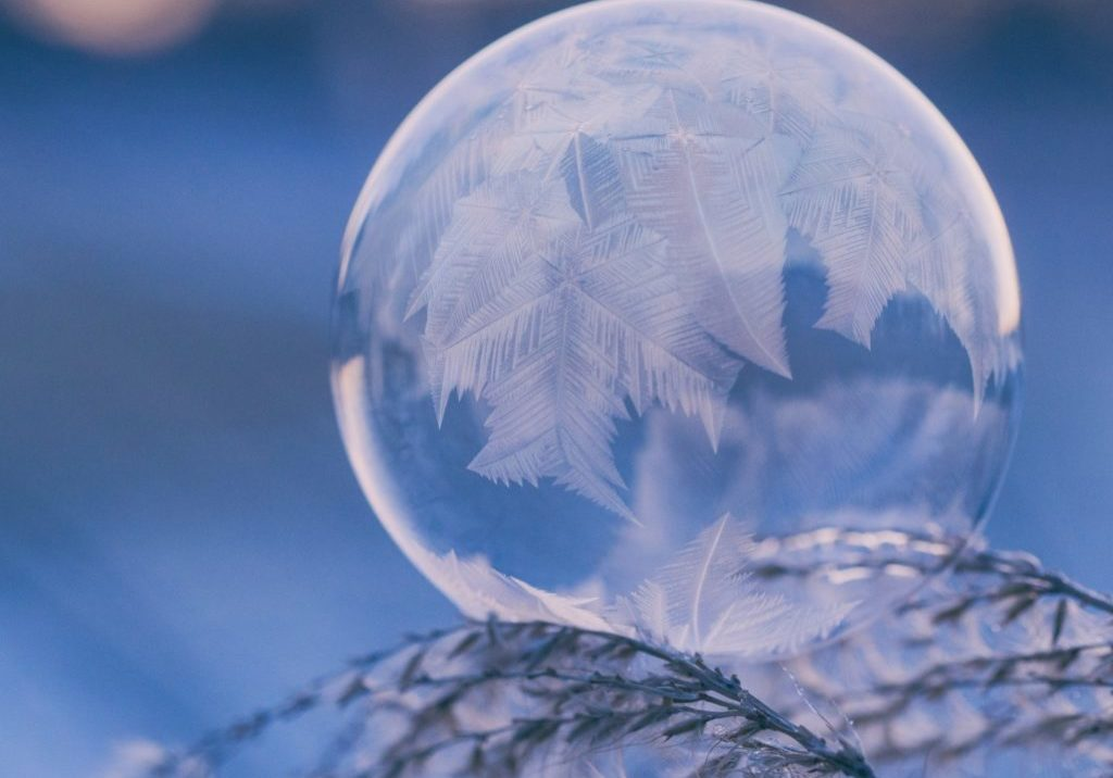 frozen bubble reflecting a tree on a branch